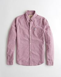Hollister - Purple Guys Stretch Oxford Shirt From Hollister for Men - Lyst