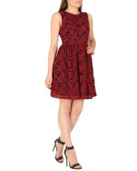 Cutie Embroidered Floral Net Dress