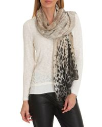 Betty Barclay - Natural Animal Print Scarf - Lyst