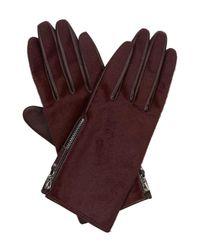 Hobbs   Red Nadine Glove   Lyst