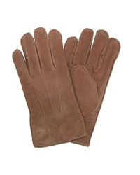 Levi's - Men Pig Suede Leather Winter Gloves Shearling Lining Brown Tan Large for Men - Lyst