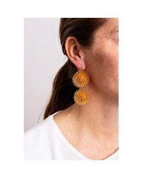 Pats Jewelry - Multicolor Gold Plated Silver Craspedia Simple Earrings - Lyst