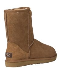 Ugg - Brown Classic Short Boot Chestnut Suede - Lyst
