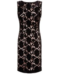 Fenn Wright Manson - Black Carrie Lace Dress - Lyst