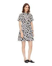 kate spade new york | Black Hollyhock Stretch Cotton Dress | Lyst