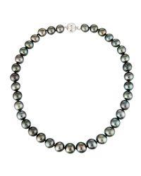Belpearl - 14k Black Tahitian Pearl Necklace - Lyst