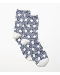 LOFT | Blue Marled Polka Dot Crew Socks | Lyst
