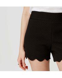 "LOFT - Black Scallop Riviera Shorts With 4"" Inseam - Lyst"