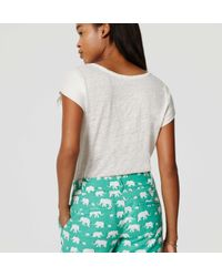 "LOFT - Green Elephant Riviera Shorts With 4"" Inseam - Lyst"
