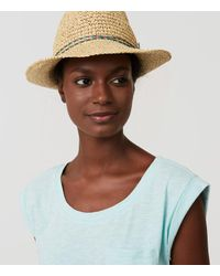 LOFT - Brown Mixed Trim Fedora - Lyst