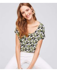 LOFT - Blue Petite Daisy Mixed Media Tee - Lyst