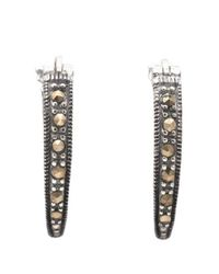 Lord & Taylor - Brown Sterling Silver And Marcasite Oval Hoop Earrings - Lyst
