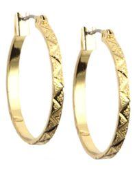 Anne Klein | Metallic 12 Kt Gold Plated Hoop Earrings | Lyst