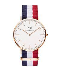 Daniel Wellington | Multicolor Classic Cambridge Rose Gold And Nato Strap Watch, 40mm | Lyst