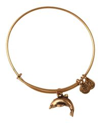 ALEX AND ANI | Metallic Dolphin Charm Bangle Bracelet | Lyst