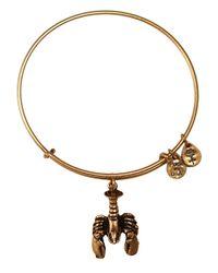 ALEX AND ANI | Metallic Lobster Charm Bangle Bracelet | Lyst