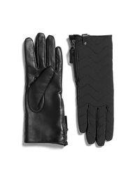 Mackage - Piner Gloves | Black - Lyst