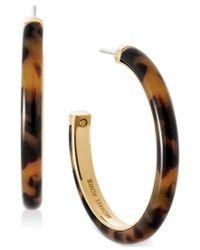 Michael Kors | Brown Gold-tone Tort Hoop Earrings | Lyst