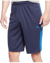 "PUMA | Blue Shorts, Form Stripe 12"" Basketball Shorts for Men 