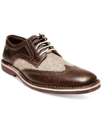 Steve Madden | Brown Men's Lookus Wingtip Oxfords for Men | Lyst