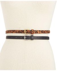 Style & Co. | Multicolor 2-for-1 Leopard-print Skinny Belts, Only At Macy's | Lyst