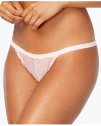 Cosabella - Multicolor Sweet Treats Zebra Sheer Lace G-string Treat0226 - Lyst