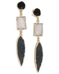 ABS By Allen Schwartz - Metallic Gold-tone Black & White Resin Drop Earrings - Lyst