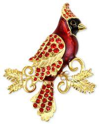 Charter Club | Metallic Gold-tone Red Crystal & Imitation Pearl Cardinal Brooch | Lyst