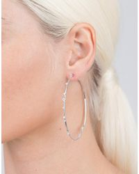 Mattia Cielo - Metallic Rugiada Diamond Hoop Earrings - Lyst