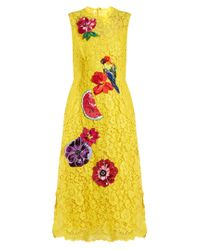 Dolce & Gabbana   Yellow Embroidered Cordonetto-lace Dress   Lyst