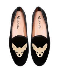 Del Toro | Black Chihuahua Slipper | Lyst