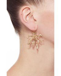 Annette Ferdinandsen - Metallic Large Coral Stick Branch Cluster Earrings - Lyst