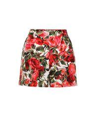 Dolce & Gabbana Red Cotton Shorts