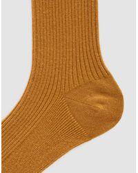 The Nude Label - Multicolor Cotton Crew Sock - Lyst