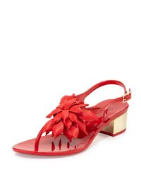 kate spade new york | Red Davina Flower Jelly Low-heel Thong Sandal | Lyst