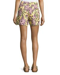 RED Valentino - Multicolor Passionflower-print Stretch-poplin Shorts - Lyst