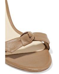 Alexandre Birman - Multicolor Clarita Bow-embellished Leather Sandals - Lyst