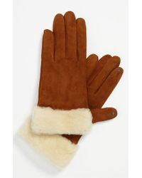 UGG | Brown Ugg Australia 'kotah Shorty' Tech Gloves | Lyst