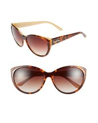 Lilly Pulitzer | Brown Lilly Pulitzer 'camden' 60mm Cat Eye Sunglasses | Lyst
