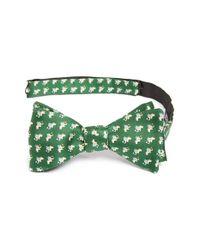 Ferragamo | Green Elephant Print Silk Bow Tie for Men | Lyst