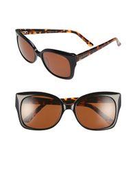 Ted Baker | Brown 'hi Dimension' 55mm Cat Eye Sunglasses | Lyst