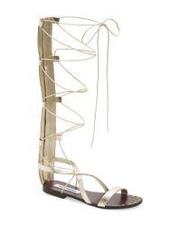 675477072362 Lyst - Steve Madden  justeen  Tall Gladiator Sandal in Natural