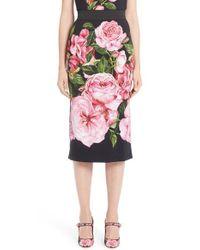 Dolce & Gabbana | Pink Rose Print Cady Pencil Skirt | Lyst
