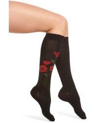 Kate Spade   Black Falling Poppy Knee High Socks   Lyst