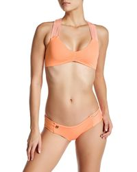 Maaji | Orange Cantaloupe Railway Reversible Bikini Top | Lyst