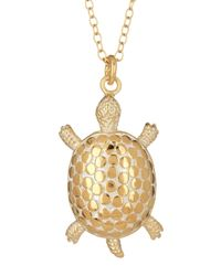 Anna Beck | Metallic 18k Gold Plated Sterling Silver Large Turtle Necklace | Lyst