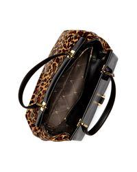 Vince Camuto - Brown Beca Genuine Calf Fur Leather Satchel - Lyst