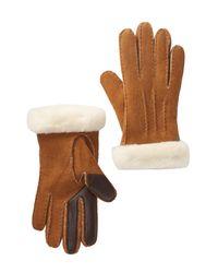 Ugg - Brown Carter Genuine Sheepskin Tech Gloves - Lyst