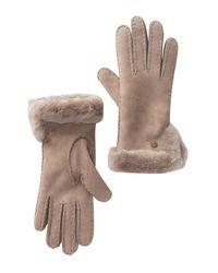 Ugg Multicolor Genuine Sheepskin Slim Side Vent Gloves