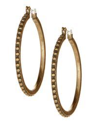 Lucky Brand - Metallic Dot Hoop Earrings - Lyst